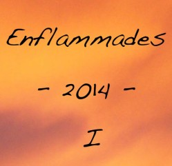 Enflammades 2014 #1