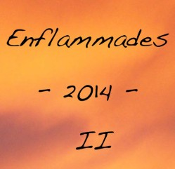 Enflammades 2014 #2