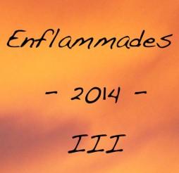 Enflammades 2014 #3